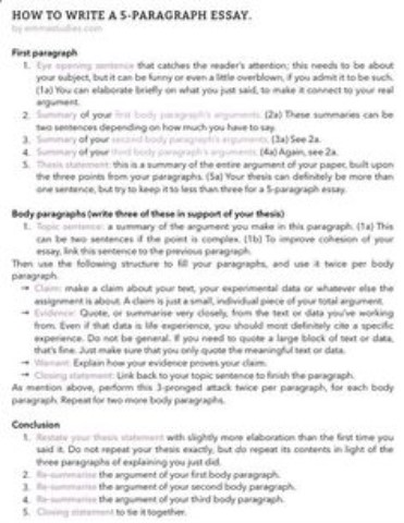 Scholarship Essay Format  Paper Writing Service
